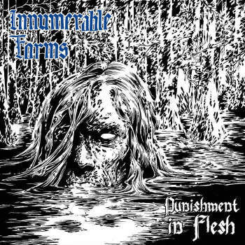 Innumerable Forms ‎– Punishment in Flesh LP