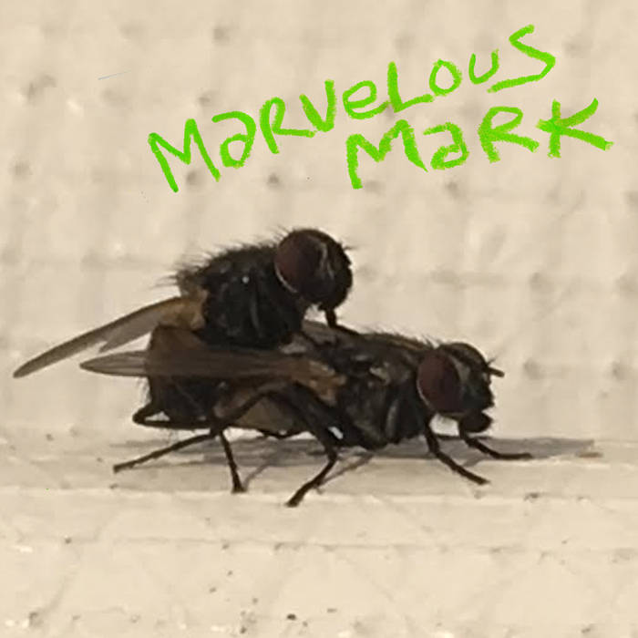 Marvelous Mark - Buzzin' LP