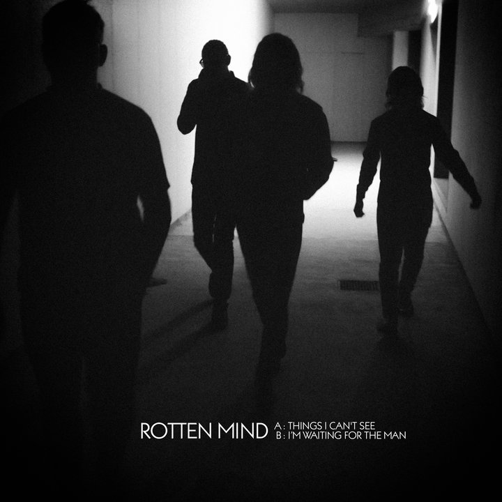 Rotten Mind - Things I Can´t See 7""