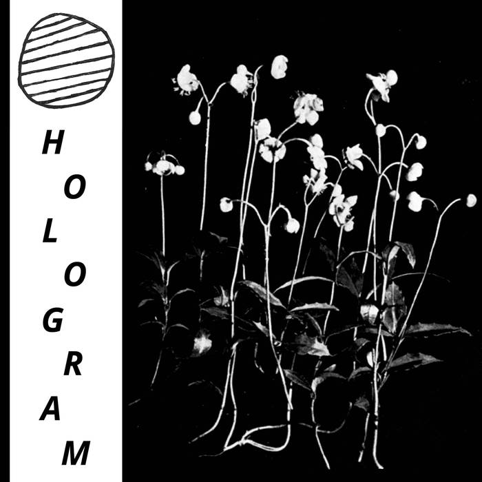 HOLOGRAM - Build Yourself up so Many Times Only to be... 7""