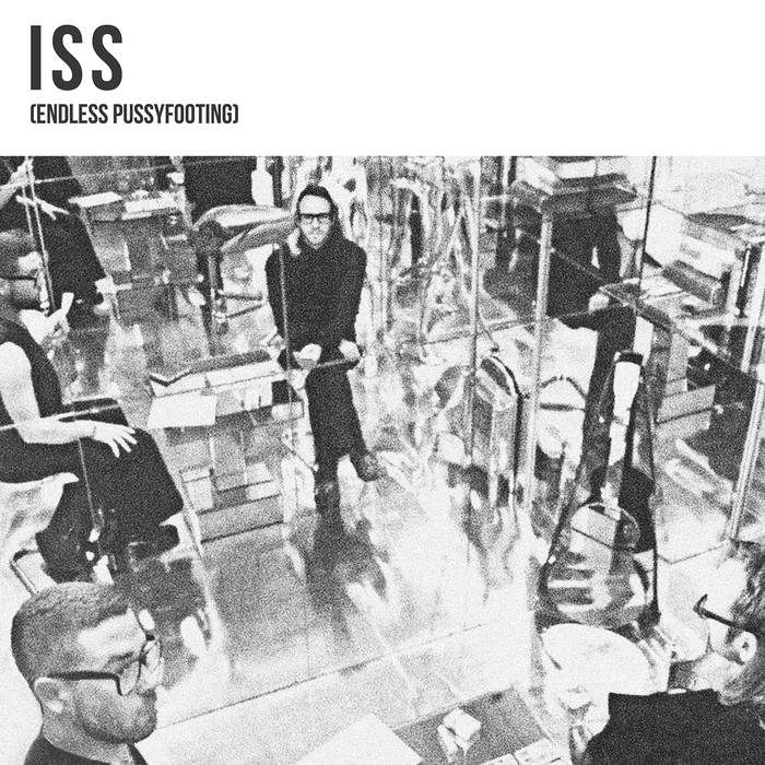 ISS - (Endless Pussyfooting) LP