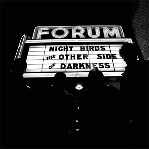 NIGHT BIRDS - The Other Side Darkness LP
