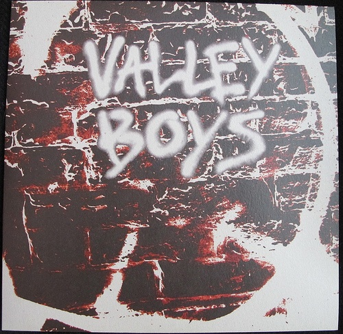 "VALLEY BOYS ""S/T"" LP"